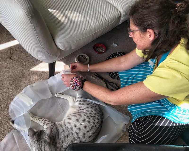 Niki Solomon - Home Furnishings expert Plymouth